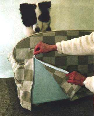 Lizzie is shown how easy it is to remove the machine-washable slipcover of her Critter Couch Classic designer pet furniture!
